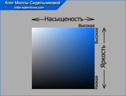 iarkost i nasiyshhenost2